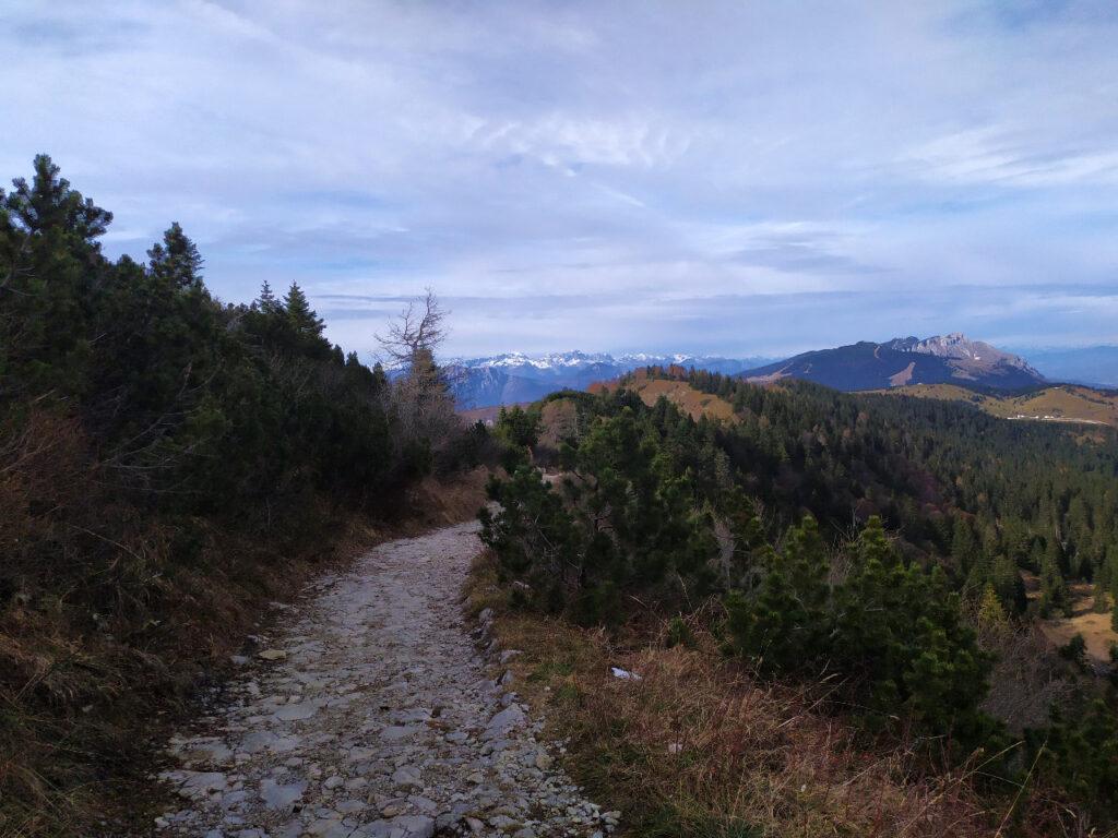 escursione alpe cimbra passo coe