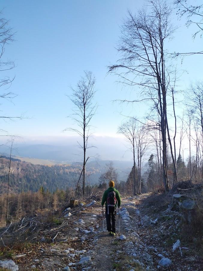 monte zebio sentiero