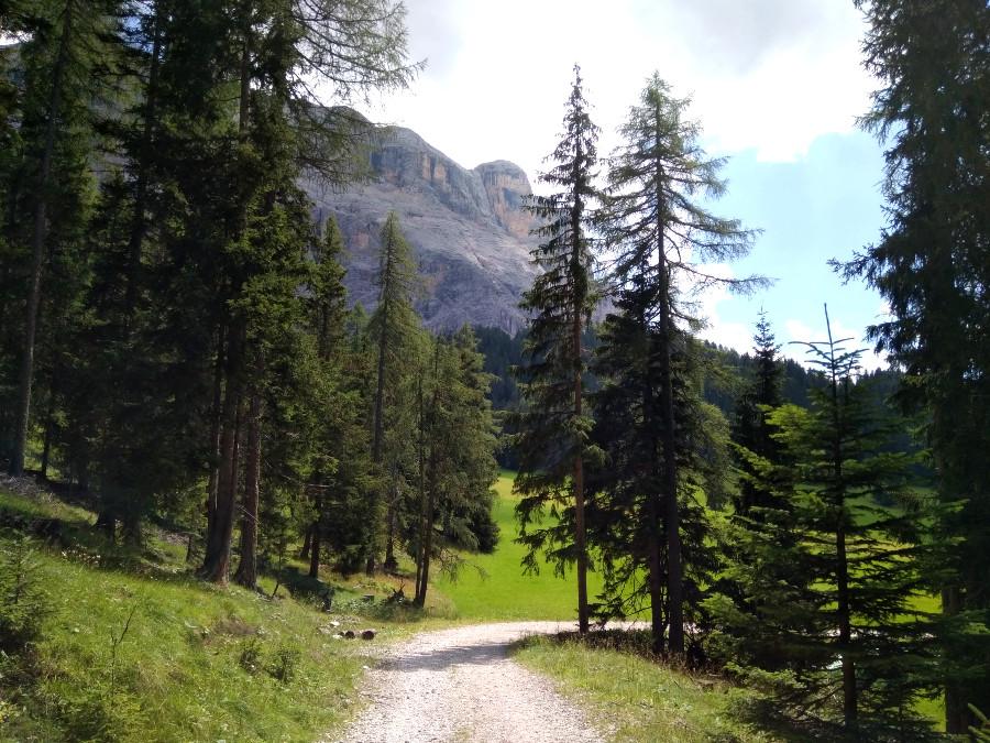 escursione facile alta badia