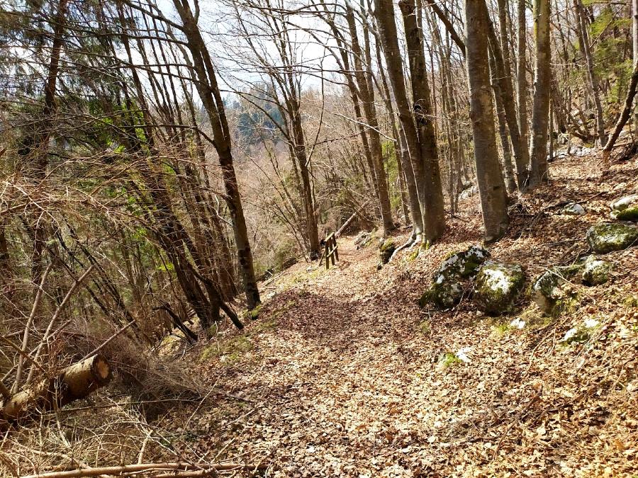 escursione tanzerloch da camporovere