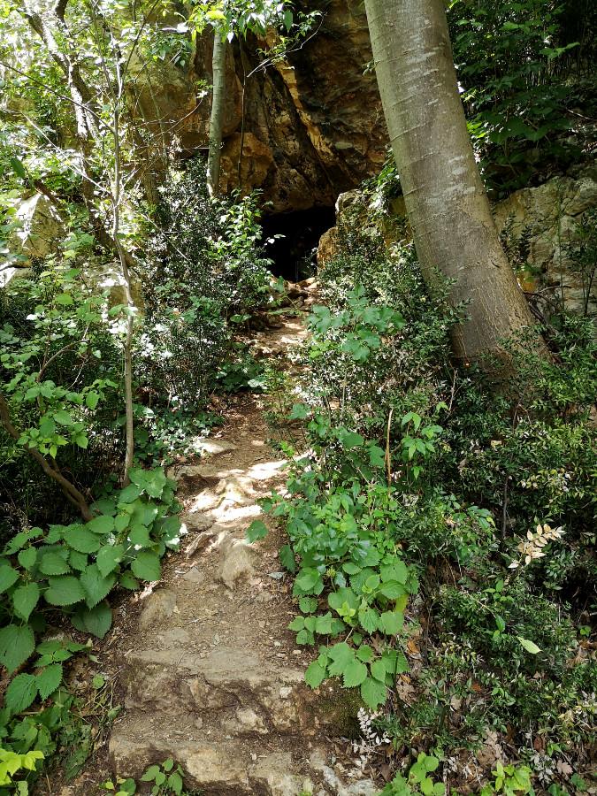 escursione sentiero 81
