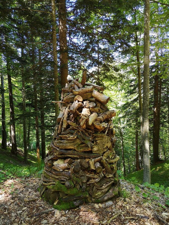 indicazioni il respiro degli alberi lavarone