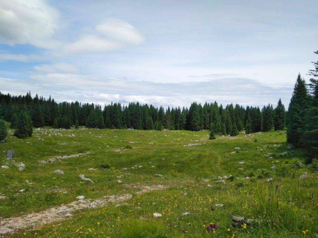 sentiero del silenzio campomulo