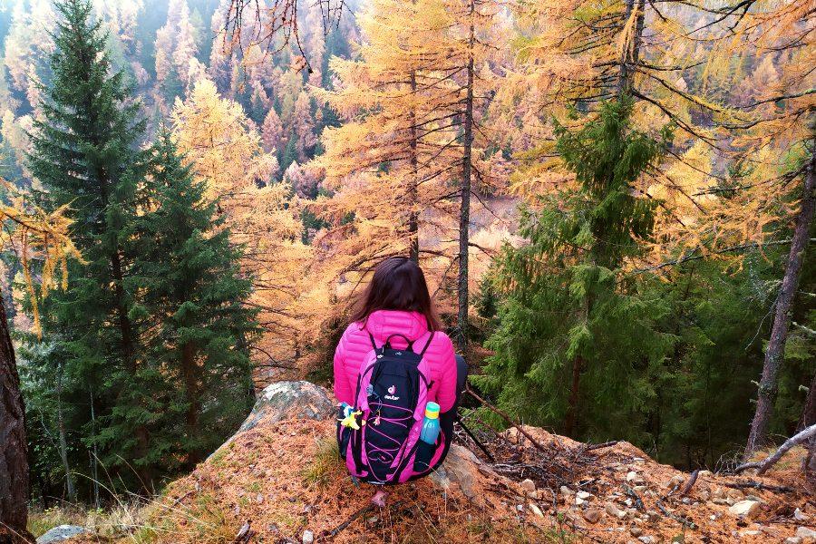 dove vedere foliage vicenza montagna