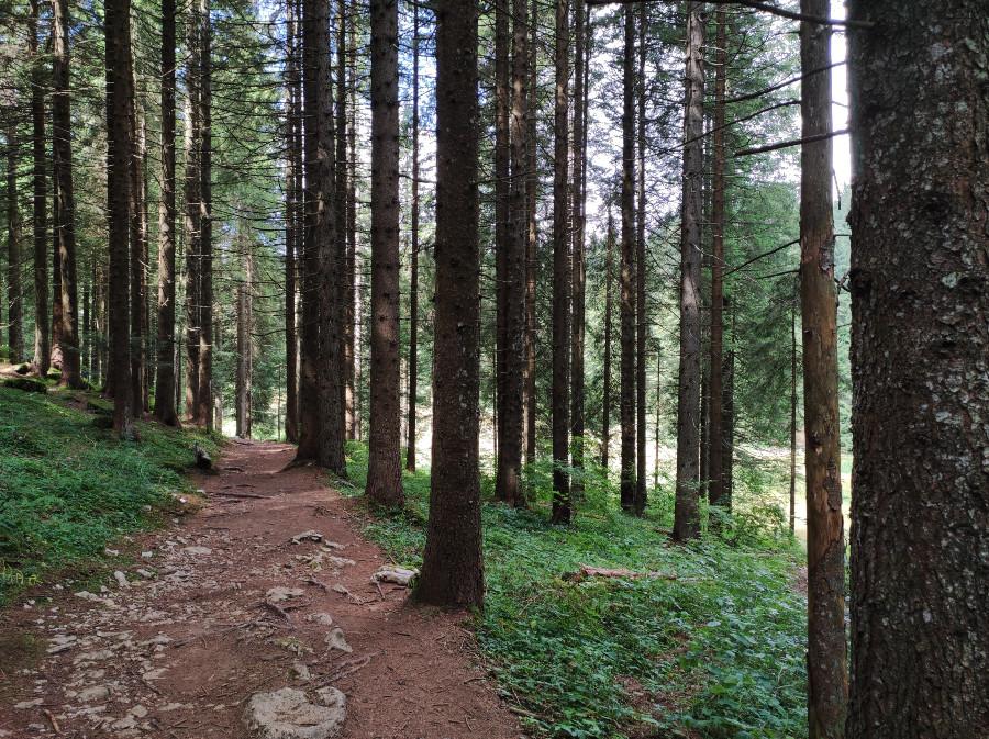 escursione facile luserna