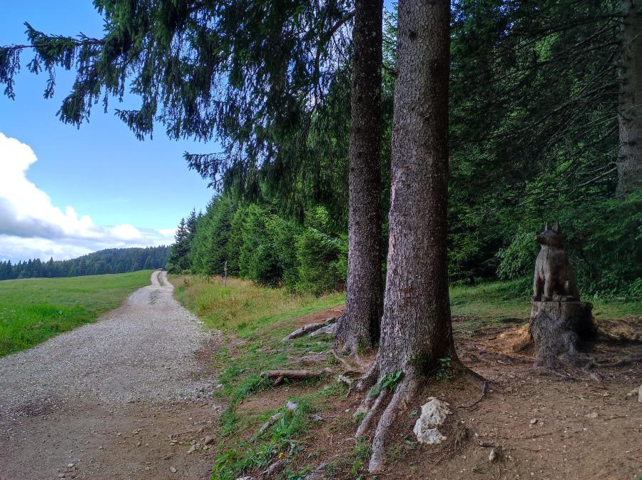 escursione sul sentiero dell immaginario luserna