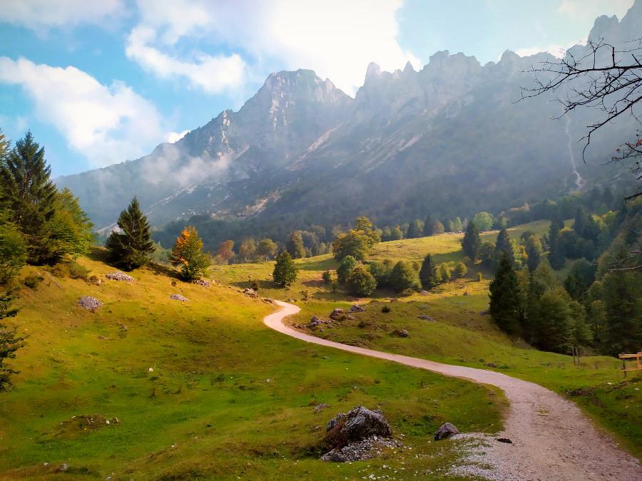 il sentiero dei grandi alberi recoaro autunno