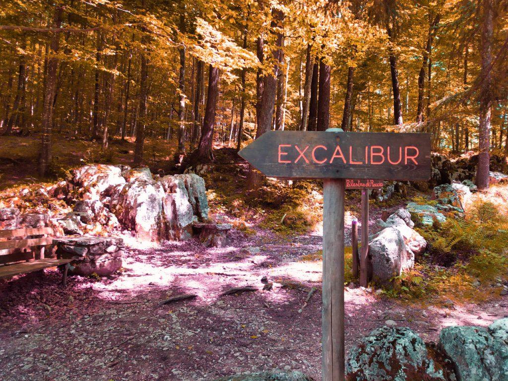 sentiero excalibur percorso didattico tonezza autunno foliage